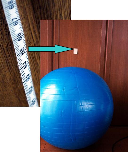 65センチ