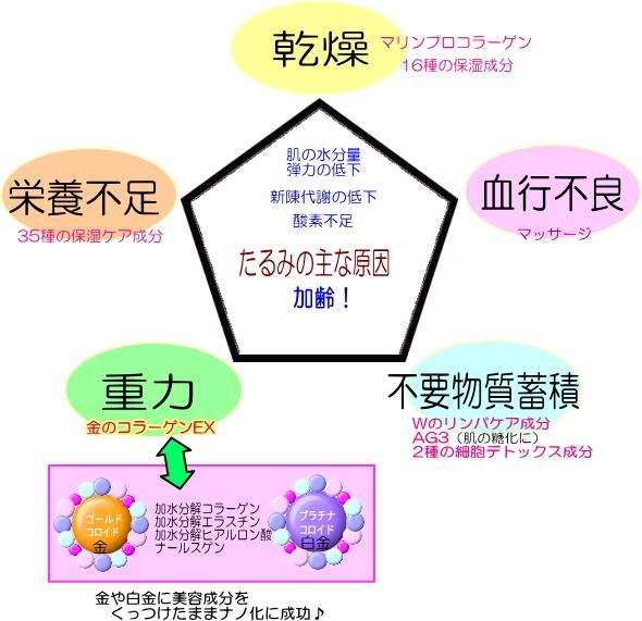 多角的全方位型ケア