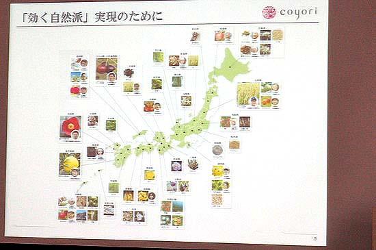 coyori_sozai